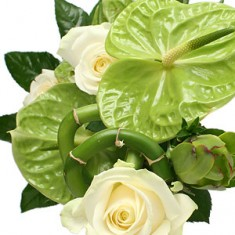 Букет цветов «Адмирал»