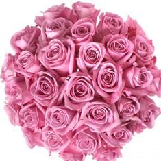 Букет из 25 лиловых роз «Аква мини»