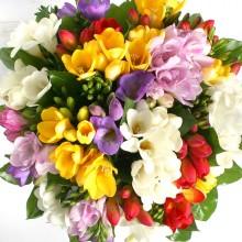 Букет цветов «Фрезия»