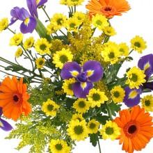 Букет цветов «Ветерок»