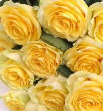 Букет из 21 розы «Натали»