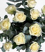Букет белых роз «Ассоль»