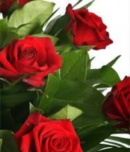 Букет из 15 алых роз «Стрела Амура»