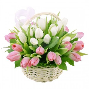 Тюльпаны в корзине «Весеннее утро»