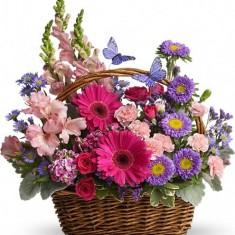 Корзина с цветами «Фантастика»