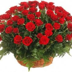 65 красных роз в корзине «Алые паруса»