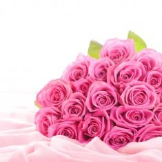 Роза малиновая «Черри»