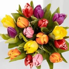 Весенний букет из тюльпанов «Надежда»