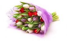 Букет из тюльпанов «Весеннее ассорти»