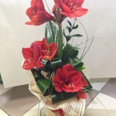 Букет цветов «Парусник»