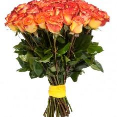Роза оранжевая Эквадор