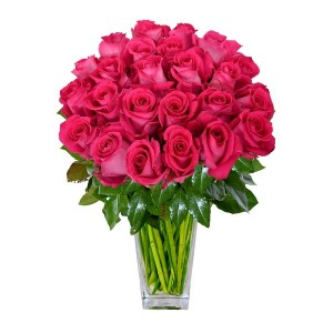 Роза розовая Эквадор