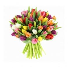 Тюльпаны Краснодар